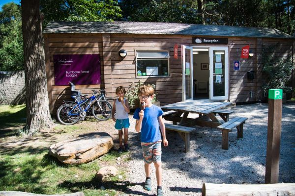 Burnbake Forest Lodges And Campsite Camping Gallery 60
