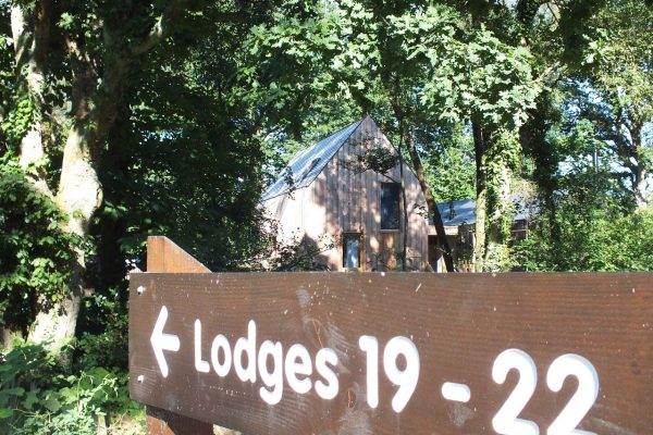 Burnbake Forest Lodges And Campsite Gallery 51