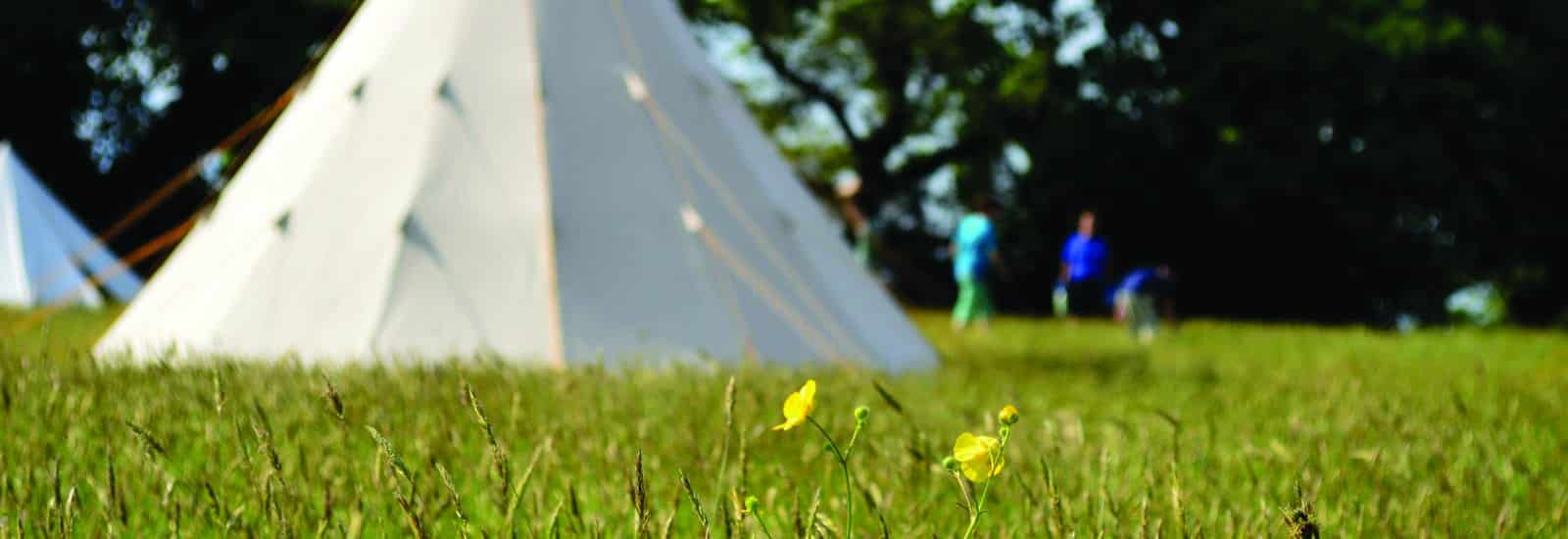 New for 2018 – Camp Cleavel Tipi Village