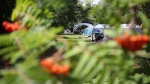 Camping at Burnbake