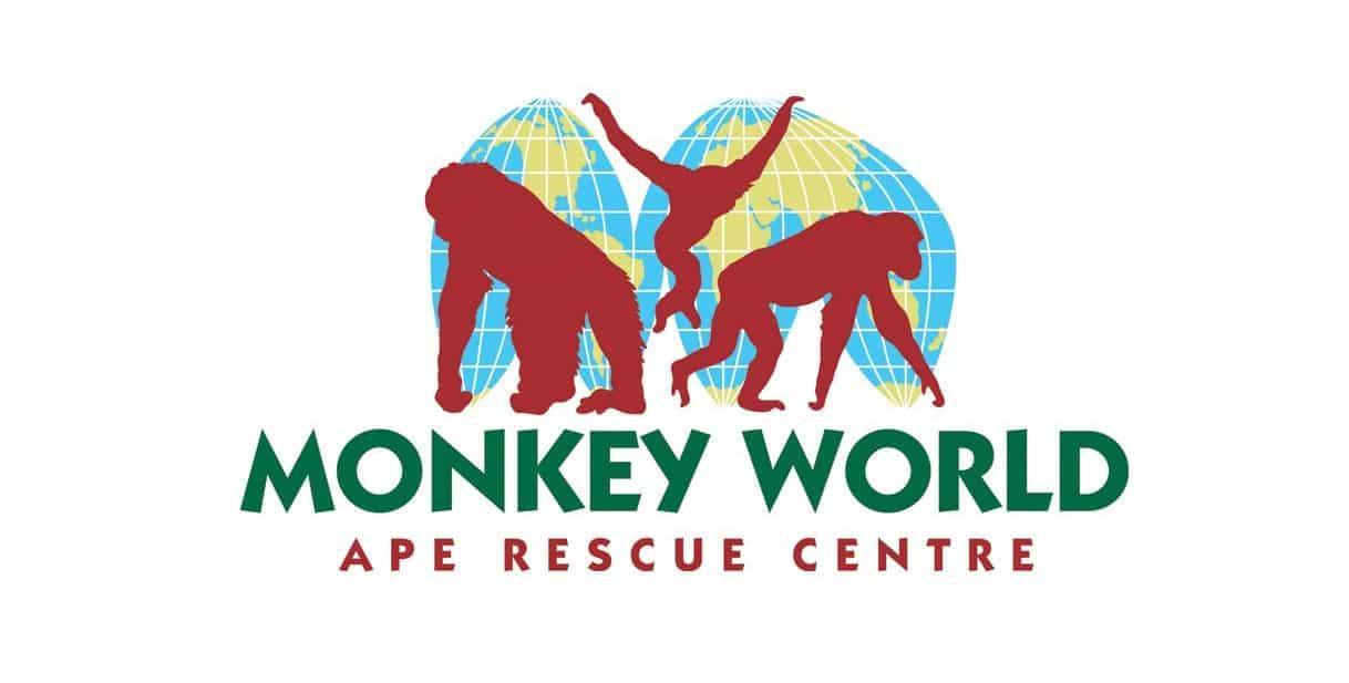 Monkey World - Ape Rescue Centre