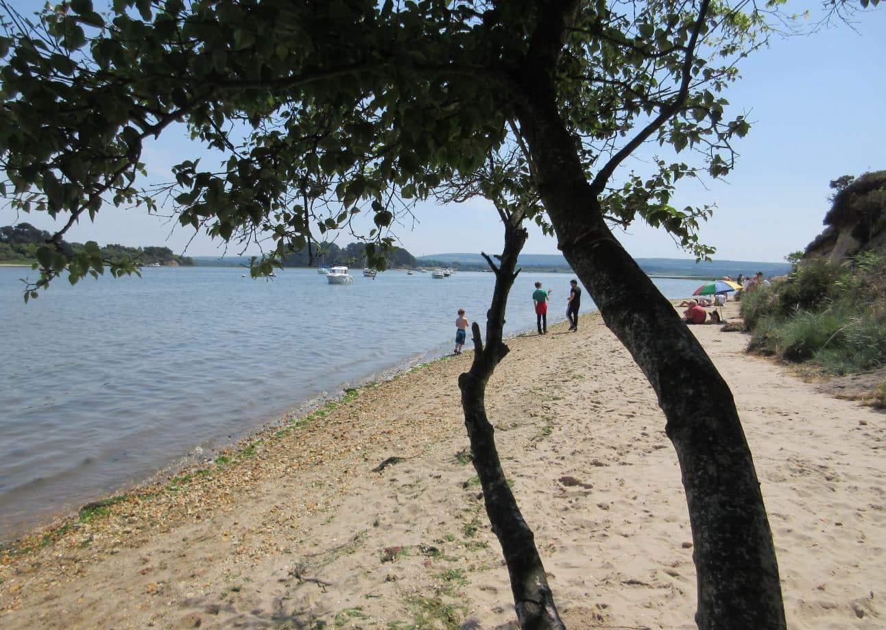 6 of the best beaches near Burnbake Forest Lodges - Shipstal Beach
