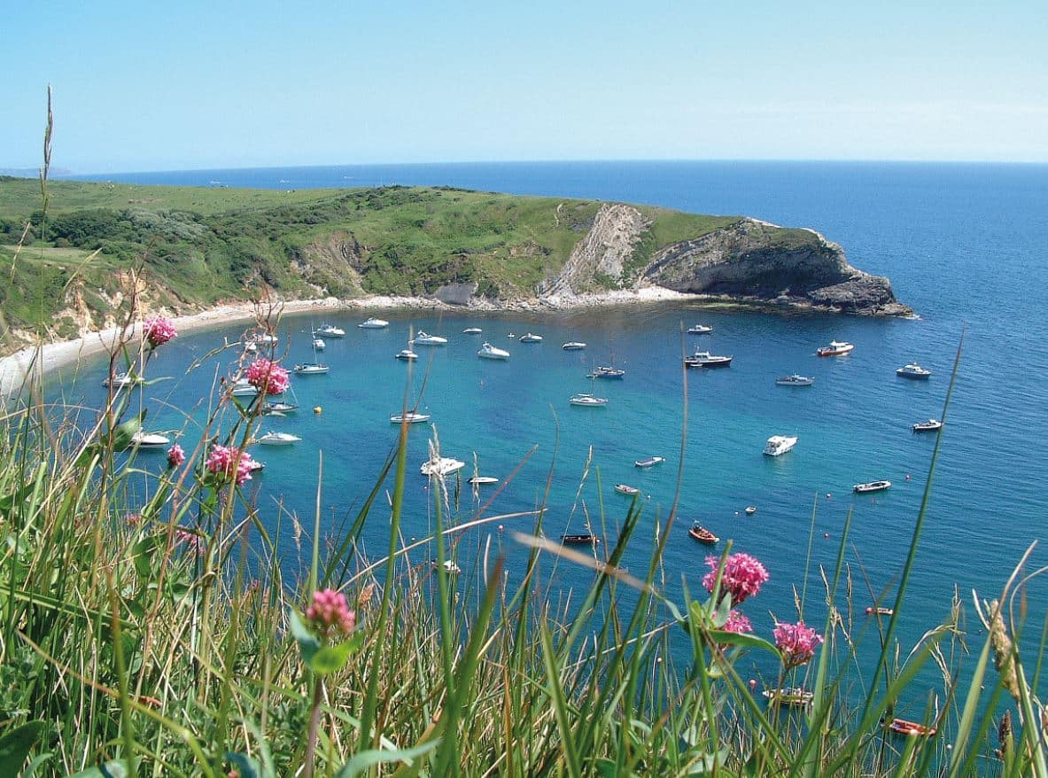 6 of the best beaches near Burnbake Forest Lodges - Lulworth Cove