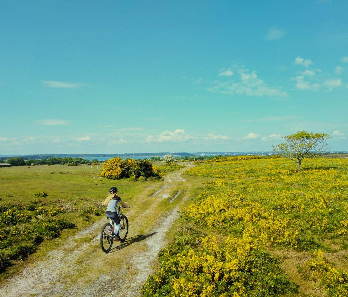 Purbeck is cycling country, with miles of safe, traffic free riding through jaw dropping scenery. Burnbake itself has 20 acres of woodland, great for kids to pedal around and explore.
