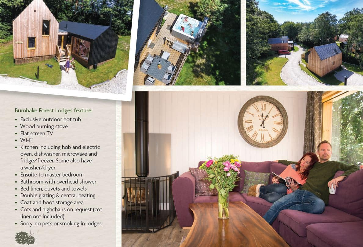 Burnbake took first prize in the self catering accommodation category at this year's Bournemouth and Poole Tourism Awards. There are 22 lodges at Burnbake, all luxuriously furnished, complete with hot tub and wood burner.