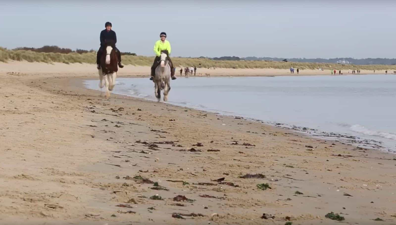 With sandy beaches, dunes, bracing cliff tops and 3000 acres of forest and heathland on our doorstep, we have teamed up with Studland Trekking Centre to offer some of the most stunning horse riding opportunities in the UK and, even better, there's exclusive discounts for Burnbake Forest Lodge Guests!