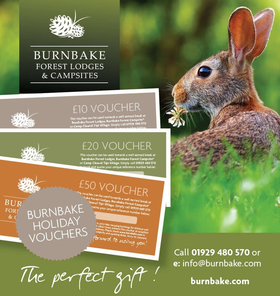Our holiday vouchers let you treat yourself, friends or family members to an unforgettable lodge or camping experience, without committing to a date and time