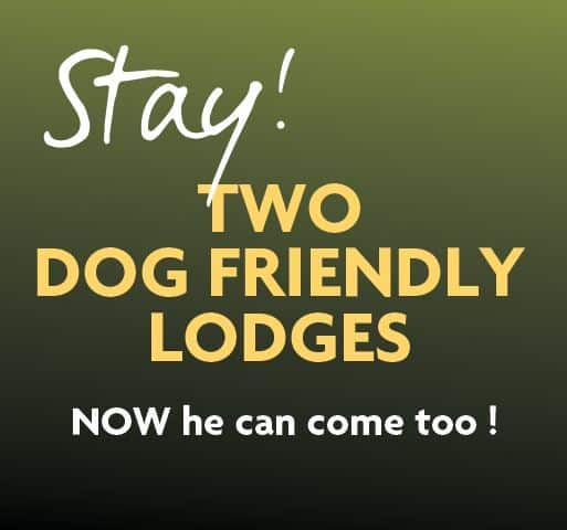 Burnbake Dog Friendly Self Catering Lodges