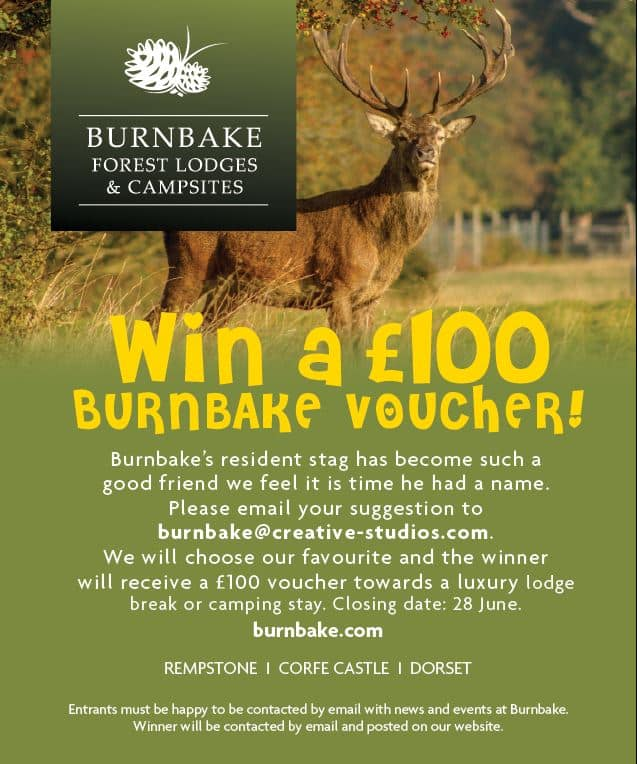 Burnbake's resident stag has become such a good friend we feel it is time he had a name. Please email your suggestion to burnbake@creative-studios.com. We will choose our favourite and the winner will receive a £100 voucher towards a luxury lodge break or camping stay. Closing date: 28 June.