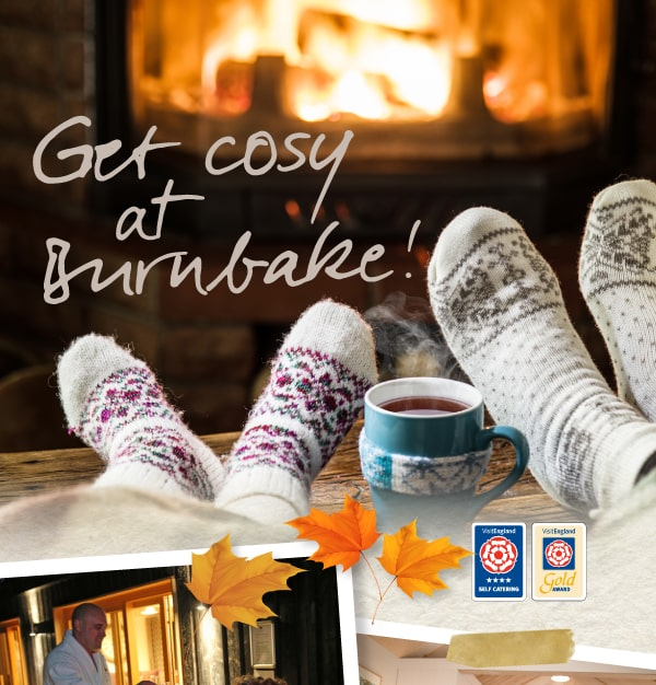 Burnbake Forest Lodges Cosy Midweek Breaks