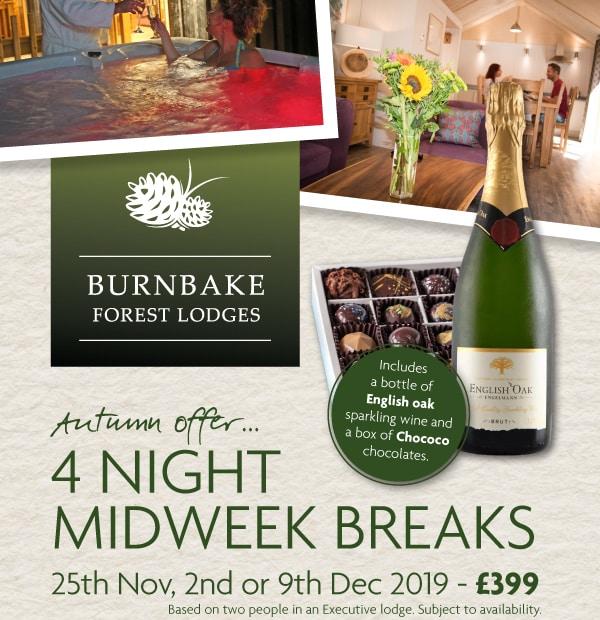 Burnbake Forest Lodges Cosy Midweek Break