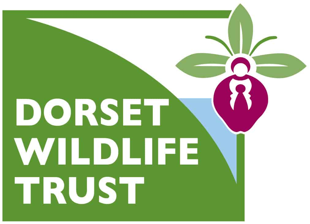 Purbeck Heaths National Nature Reserve Partner Dorset Wildlife Trust