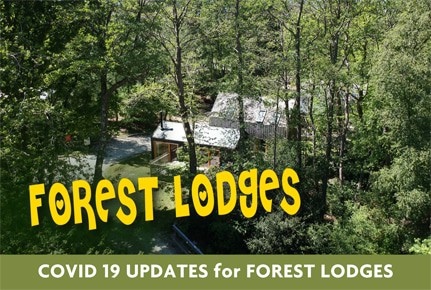 burnbake-forest-lodges-dorset