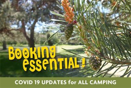covid-camping