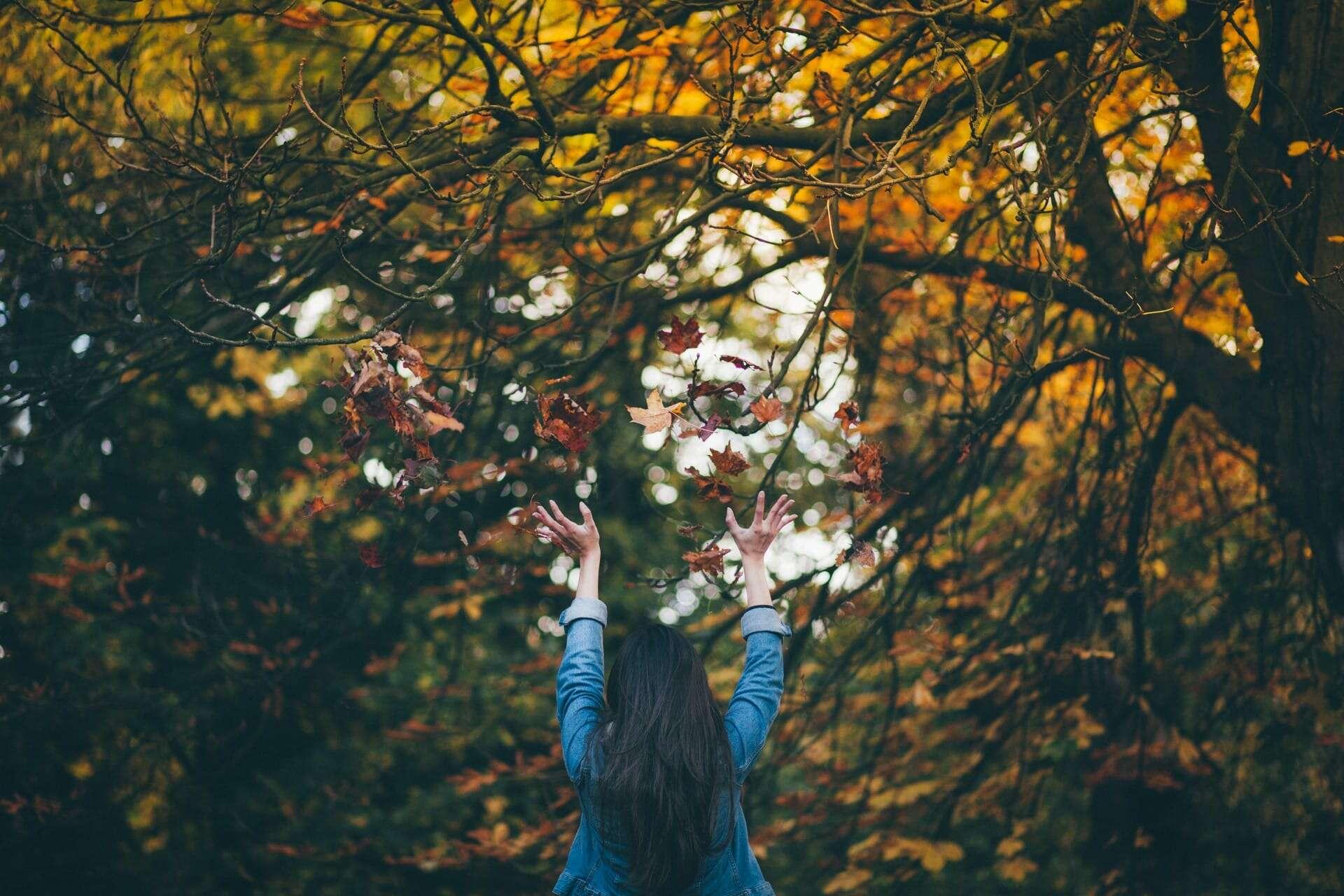 Stunning autumn staycations